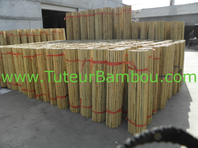 palissade bambou